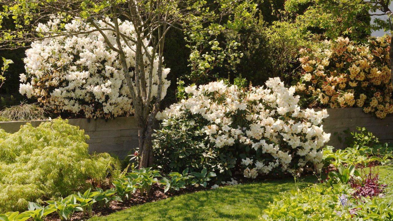 privatgarten einsiedeln lsla gmbh lustenberger schelling. Black Bedroom Furniture Sets. Home Design Ideas